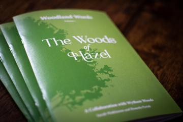 The Woods of Hazel poetry booklets