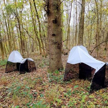 two malaise traps in Wytham Woods